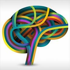 بررسی سبک یادگیری و خودکارآمدی در دانشجویان
